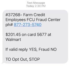 Sample debit card security alert